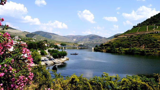 douro-valley-small-group-tour-with-wine-tasting-portuguese-lunch-and-in-porto-155754.jpg